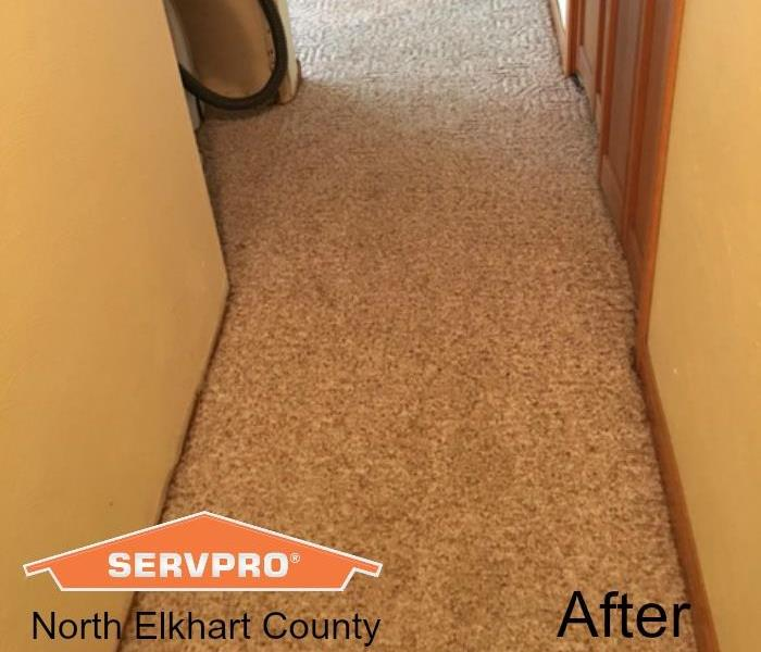 Carpet Cleaning After A Water Damage After