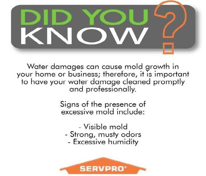 Mold damage can result from a water damage not mitigated correctly