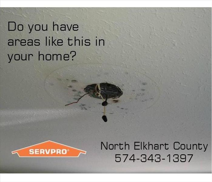 Do you have Mold in your Elkhart home?